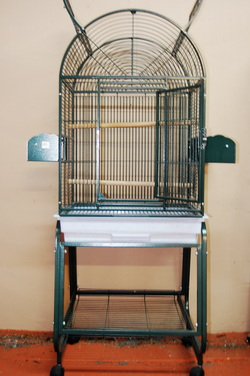 Green Metal cage open top